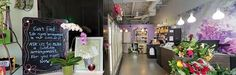 Check out our newly published Google 360 tour! You can view our entire shop from the comfort of your home. Let us know what you think. #yyc #Calgary Thanks 360 Business Photos - Calgary.   https://www.google.com/maps/place/Funky+Petals/@50.8809773,-113.9578233,3a,75y,78.64h,90t/data=!3m5!1e1!3m3!1si6gQDh1yOnoAAAQYlCjvoQ!2e0!3e2!4m2!3m1!1s0x53719d7a77889127:0xb2409b5e72ed3281!6m1!1e1?hl=en