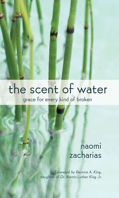 the scent of water grace for every kind of broken naomi zacharias