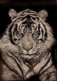 Siberian Tiger artwork. #art #artwork #artist #asia #asian #tattoos #tiger #animal #peace #eyes #eye #tiger #siberian #siberia #russia #china #blackandgrey #3d #grande #la #losangeles #inked #ink #portraits #portrait #drawing #artsy #photorealism #wildlife #wild #nature