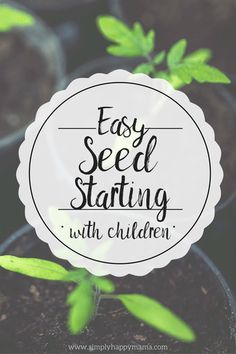 Easy seed starting with children
