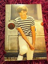 """One Direction 1D Louis Tomlinson 6"""" x 4"""" Photo Card Photo Print 2012 Number 12"""