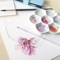 #watercolor#watercolour#watercolorpainting#draw#drawing#paint#painting#illustration#flowers#botanical#botanicalart#botanicalillustration#pink#aquarelle#workingprogress#иллюстрация#акварель#art#artist#artblog#art_help#art_gallery