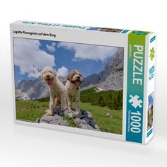 Jodeling greetings from Coco and Mascarpone, sitting high up in the Tyrolean mountains on their preferred panorama rock.  #lagottoromagnolo #mountains #rock #jodeling #boyandgirl #wuffclickpic #puzzle #dogsthathike #wemakedogsclimb