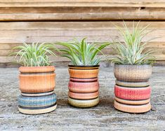 Colorful Gradient Planter Indoor or Outdoor Planter choose   Etsy Flower Pot People, Clay Pot People, Plant Table, A Table, Ceramic Planters, Planter Pots, Clay Planter, Colorful Succulents, Air Plant Terrarium