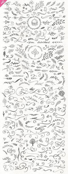 . Calligraphy Borders, Calligraphy Flowers, Caligraphy, Flourishes, Chalkboard Doodles, Chalkboard Designs, Chalkboard Art, Doodle Tattoo, Doodle Drawings