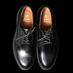 Alden Cordovan Blucher, in black. Good lord, amazing, and so, so spendy.