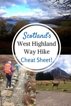 Are you ready to trek the 96 miles of Scotland's West Highland Way? Fear not, here is the ultimate guide on packing, accommodation and a day by day run down. #ScotSpirit: