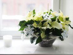 Pupulandia: Joulun tunnelmaa kukista