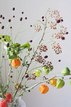 Jullie kennen ze wel, de oranje lampionnetjes aan een tak! Ze zijn vrolijk en heel leuk voor in de herfst! En laat ze na de herfst drogen zodat je bijvoorbeeld aan de muur kan hangen. Bunch Of Flowers, Simple Flowers, Amazing Flowers, Love Flowers, Fresh Flowers, Spring Flowers, Foto Website, Deco Floral, Flower Decorations