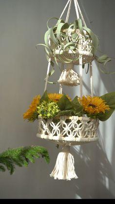 Rope Plant Hanger, Hanging Fruit Baskets, Macrame Design, Macrame Projects, Macrame Patterns, Plant Decor, Plants, Dip Dyed, Natural Materials