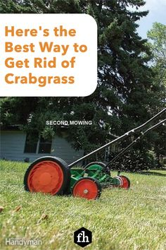Here's the Best Way to Get Rid of Crabgrass