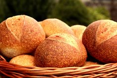 Peach, Bread, Fruit, Food, Brot, Essen, Baking, Peaches, Meals