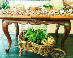 festa fazendinha!!! linda mesa!!!