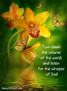 """Turn down the volume of the world and listen for the whisper of God."" Inspirational quote by Nancy McGuirk. Download a Sample Lesson from Nancy's new #Bible Study on Philippians NancyMcGuirk.com"