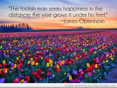 """The foolish man seeks happiness in the distance; the wise grows it under his feet."" ~James Openheim #happiness #behappy #wealth"
