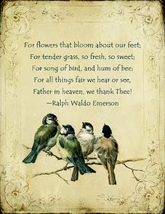 Emerson thanksgiving poem for prayer Ephemera's Vintage Garden: Weekly Freebie: Chickadee Thanksgiving Ralph Waldo Emerson, Great Quotes, Me Quotes, Inspirational Quotes, People Quotes, Lyric Quotes, Clever Quotes, Nature Quotes, Pomes