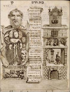 tabulae sceleti e musculorum corporis humani, 1749. anatomist - rernhard siegfried albinus artist - jan wandelaar image: courtesy of the national library of medicine