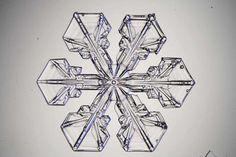 Yksittäinen lumikide on kuin pieni palanen lasia: kirkas ja läpinäkyvä