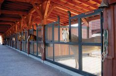 If you have to have stalls for your horses I love these mesh fronts.  Allows for good airflow (less ammonia etc.) and horses are a part of the goings on in the barn.