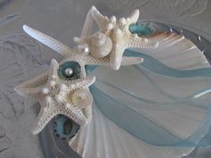 Beach Wedding Ring Bearer's Shell with Starfish, Turquoise Limpets and Pearl Umbonium