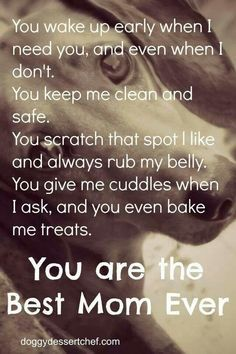 For all the pet Moms like me