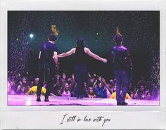 Three Boys, The Black Keys, Jonas Brothers, Eternal Love, Roller Coaster, Concert, Roller Coasters, Concerts
