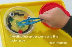Our little scientists spent the last 30 minutes of our day investigating spider parts through this intriguing fine motor building process. This process was simple to prepare but needs at least 24 hours advance notice to get it ready. Fall Preschool, Preschool Themes, Preschool Science, Teach Preschool, Motor Activities, Science Activities, Toddler Activities, Parts Of A Spider, Spider Crafts