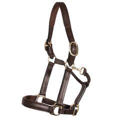 Horse Halters, Horse Bridle, Leather Halter, Horse Stuff, Brass Hardware, Hand Stitching, Solid Brass, Joseph, Fancy
