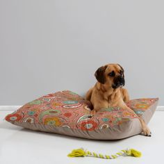 Heather Dutton Adora Paisley Pet Bed | DENY Designs Home Accessories @DENY Designs