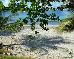 Trinité. Martinique. FWI