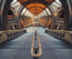 fish eye view of main hall of london's natural history museum