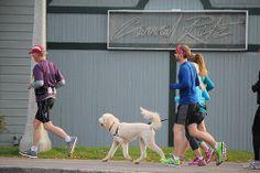 Training Plan, Marathon Training, Proper Running Form, Sports, Hs Sports, Sport