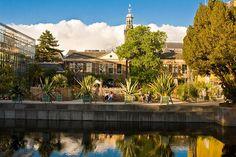 Leiden The Netherland -Botanic Garden