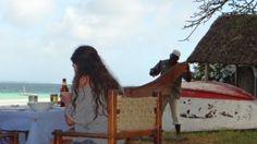 Kenia Diani Beach ist ein bezaubernder und energetischer Ort für einen Urlaub Diani Beach, Camel, Animals, Kenya, Places, Vacation, Animales, Animaux, Camels