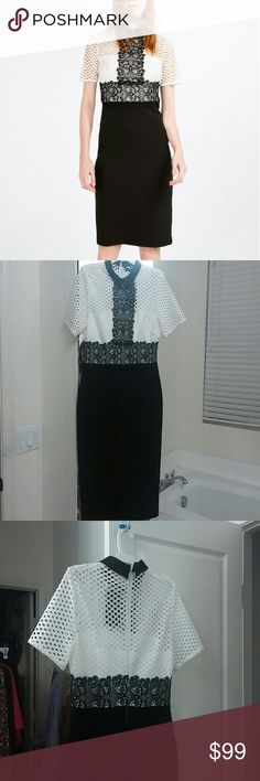 Classy lace top dress -- Zara White and black dress with lace details, short sleeves, black pencil skirt with stretch..... Total length about 43 inches....medium about size 6 & large about size 8 to 10...Perfect for semiformal affairs.....main material 100% polyester, 2ndary material 85% polyester, 15% elastane, lining 100% polyester...machine wash gentle cycle, air dry Zara Dresses