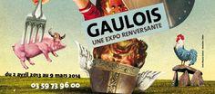 """""""Les Gaulois, une expo renversante"""" à Villeneuve d'Ascq (forum départemental) jusqu'en mars 2014"""