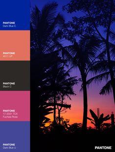 Palettes / Color : No. 15 Desktop Screenshot, Palette, Color, Colour, Pallets, Colors