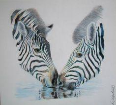 Resultado de imagem para animal art