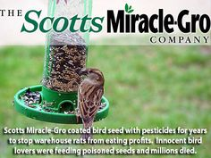 Monsanto owns Scotts Miracle-Gro.  After knowingly selling pesticide coated bird seed to customers for years, Scotts Miracle-Gro pleaded guilty to selling poisoned bird seed.  Don't give this company your dollars.  They didn't want to lose money from rats eating the seeds so that is why they did it.  Pure greed.  The money thay had to pay was no where near enough for the damage they did and all of the birds they killed at the hands of people just wanted to feed them.