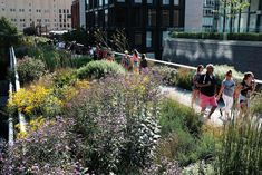 Rewilding our cities: beauty, biodiversity and the biophilic cities movement | Architecture | The Guardian Movement Architecture, Street Trees, City Farm, Community Space, Flood Risk, Property Values, High Line, The Guardian, Ecology