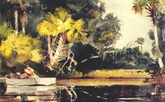 Homosassa Jungle, Florida - by Winslow Homer