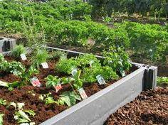 Afbeeldingsresultaat voor horta.org Wall, Vegetable Garden, Walls