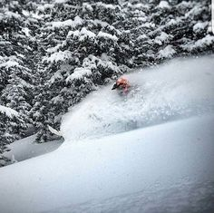 #Repost from our ambassador @mercier4colorado picking lines and slamming through powder on this #humpday. What #motivates you throughout the week? Let us know @cyclopsgear so we can share your #passion with the world. While you're at it feel free to browse through our website for a product that might interest you! ✌❄ #RECORDLIFE #Snowmobile #brp #braap #braaap #lifestyle #motivation #sledlife #itswhatsnext #sled #photooftheday #nofilter  @skidooofficial @brp_monsters