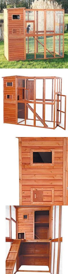 Carriers and Crates 116362: Trixie Pet Products Outdoor Cat Run, Glazed Pine -> BUY IT NOW ONLY: $433.99 on eBay!
