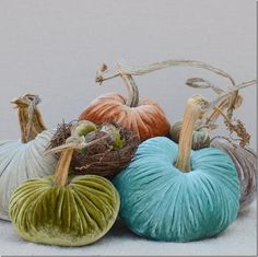 cote de texas blog velvet pumpkins