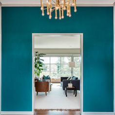 maybe one accent wall?