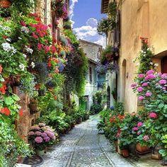 """美しい街並みと、最先端のファッションが揃う国、イタリア。イタリア中に、その魅力は散りばめられているんです。そんなイタリアの、ウンブリア州にある「スペッロ」。""""花の絨毯""""で有名な村です。小さな村で、他では味わえない美しい街並みに触れることができます。それでは、そんな「スペッロ村」について紹介します。"""