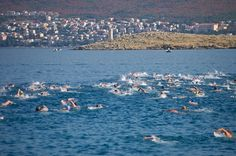 """Crikvenica swimming marathon"", Samstag 15.08.15 ab Šilo auf der Insel Krk ins 3,5 Kilometer entfernte Crikvenica an der Kvarner Riviera. Info: https://www.facebook.com/kvarner.hr?fref=ts"
