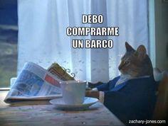 Miáucoles: Lolcat en español: Debo comprarme un barco