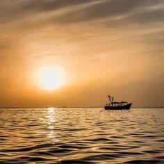 #dashansheying.net #India #Chennai #Fujifilm #XPro-2 #Pichavaram #Mangrove